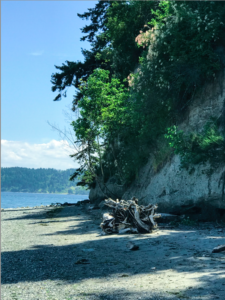 Vashon Island Beach Walk CancerRoadTrip