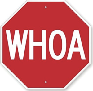The sign says WHOA rather than STOP