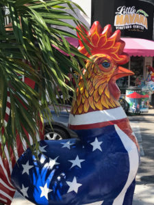 Rooster from CancerRoadTrip in Miami CancerRoadTrip Cancer Road Trip