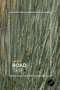 2018-Cancer-Road-Trip Botanical Garden in Santa Fe
