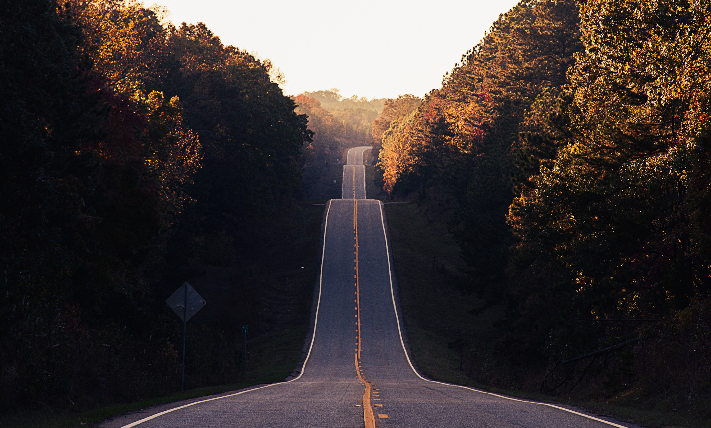 Choosing A Path