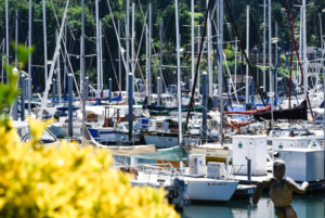 #Boats Seattle #Bainbridge #CancerRoadTrip Puget Sound Puget Sound