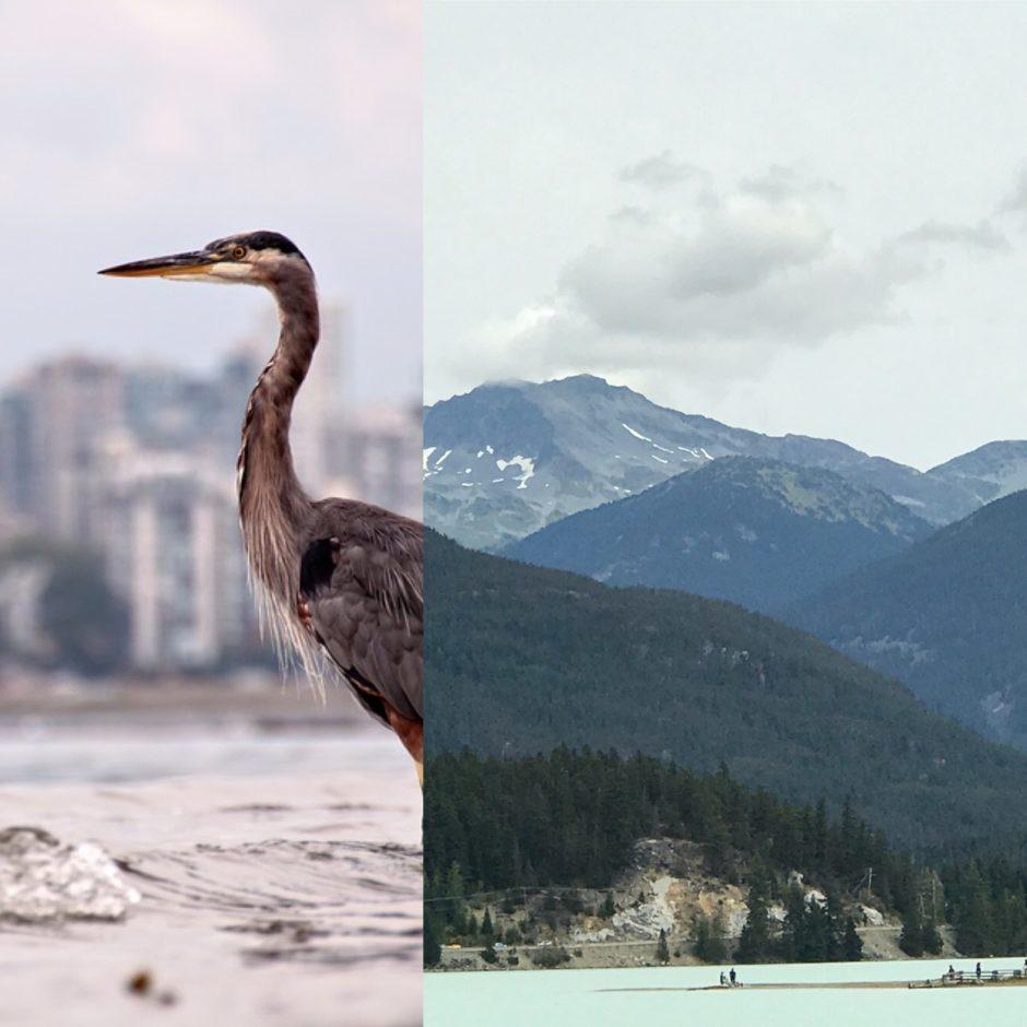 #whistler #olymics #vancouver #hellobc #thankyoucanada