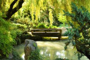 #Vancouver #Canada #Garden #CancerRoadTrip
