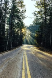 A road leads through a forest towards rays of sunlight.