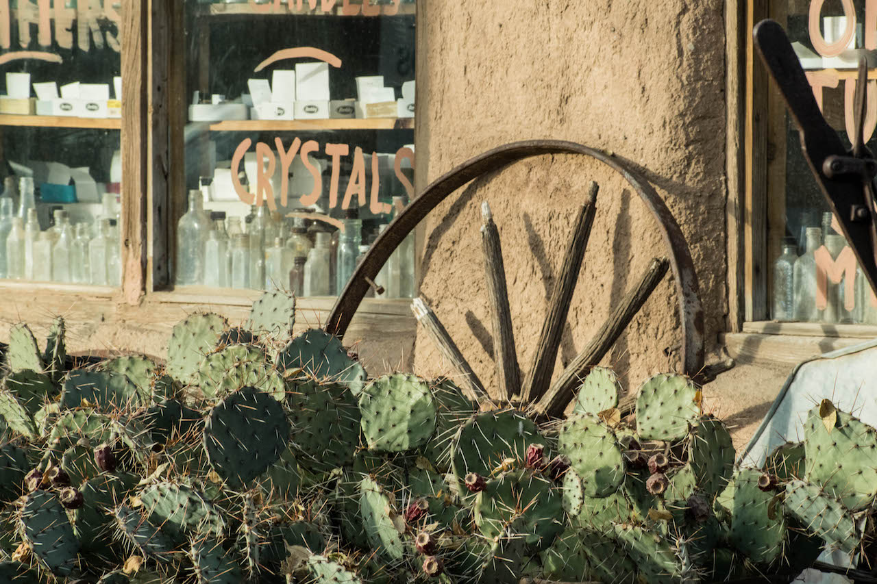 Cancer-Road-Trip Cacti and wagon wheels