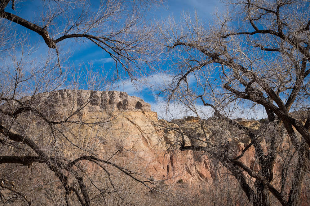 Cancer-Road-Trip Ghost Ranch NM