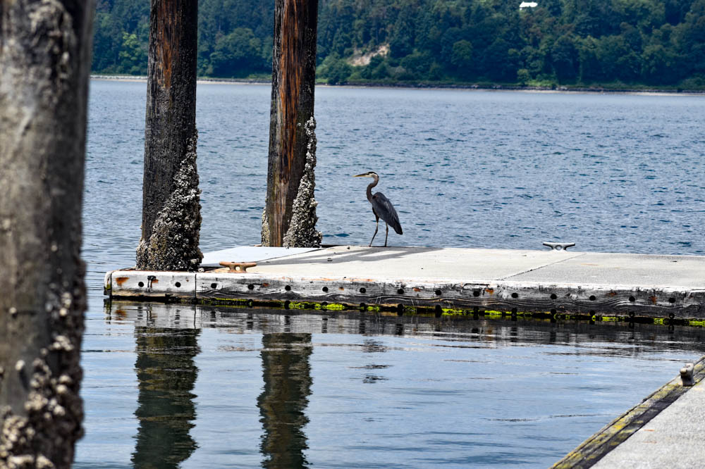 Vashon Island CancerRoadTrip Cancer road trip