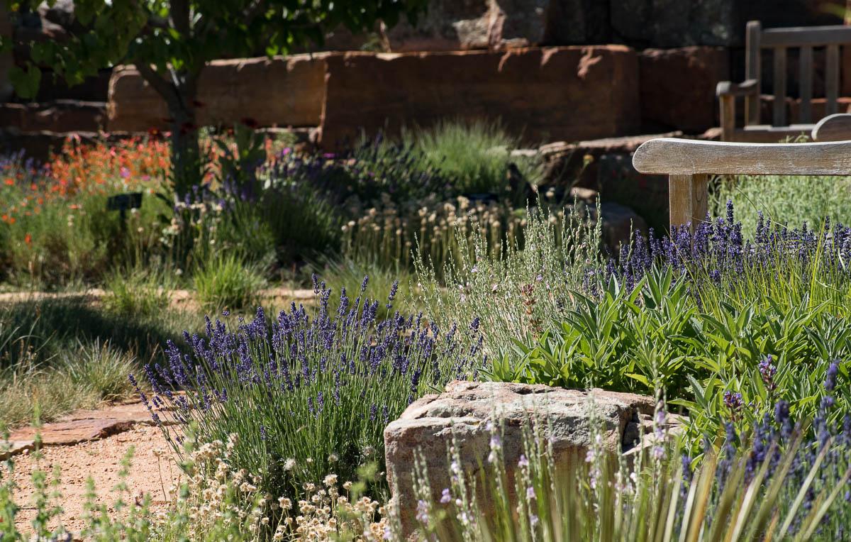 Santa Fe Botanical Garden CancerRoadTrip