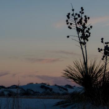 White Sands, New Mexico CancerRoadTrip