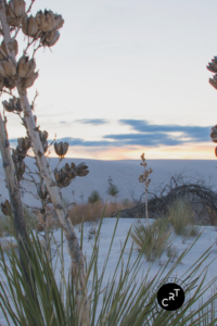 White Sands, CancerRoadTrip