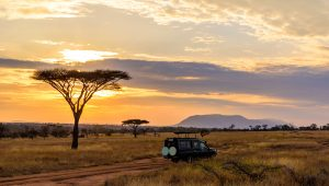 Visas and Vaccinations for Tanzania