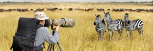 photo gear, tripod, lens, monopod, Nikon, African photo safari