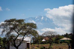 Kili, Kilimanjaro