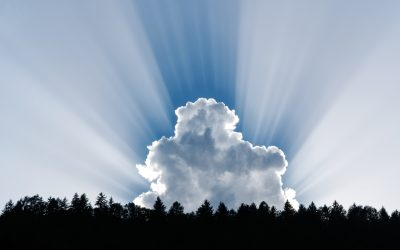 Silver Linings In The Time of Corona